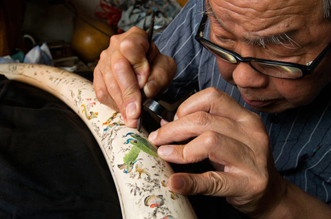 BEIJING, CHINA. Chen Jipin, 82, has been carving ivory since he was 13 years old. Here he adorns a tusk with the classic Chinese story, A Hundred Birds Facing the Phoenix. With the dwindling supply of legal, old ivory, the membership of his carving association is also decreasing - the youngest member is now 45 years old.