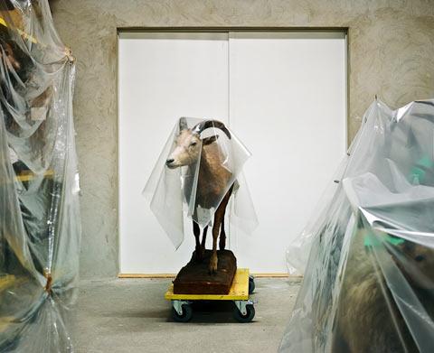 Klaus Pichler photography
