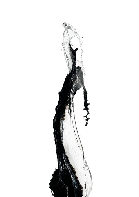 Shinichi Maruyama photography ink water