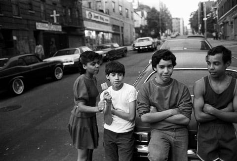 Bronx Boys Stephen Shames