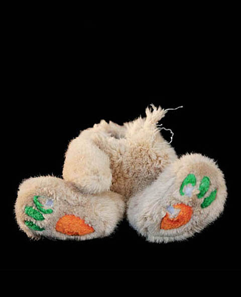 Puppy Toys For 10 And Up : Photos of chewed up dog toys that have seen better days