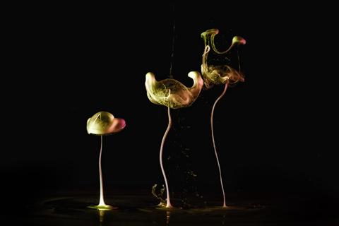 macro photography liquids Markus Reugels