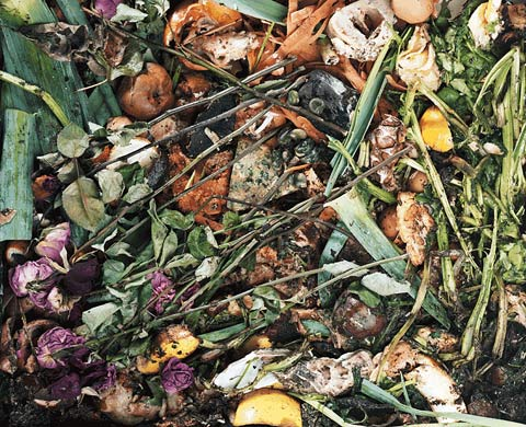 compost frederic-delangle photography