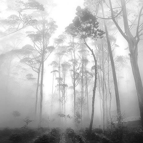 Hengki Koentjoro Indonesia photography