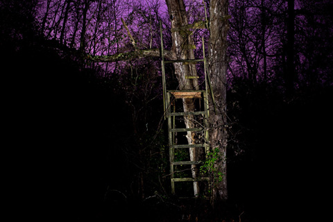 deer stand hunting stand jesse burke photography