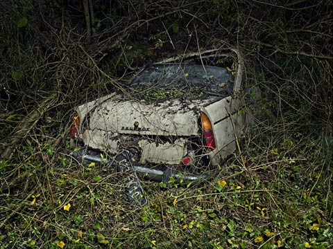 Peter-Lippman photography