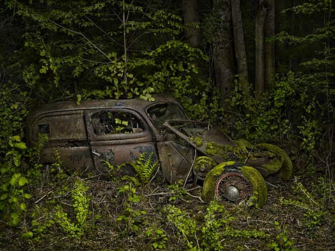 Peter-Lippman photography