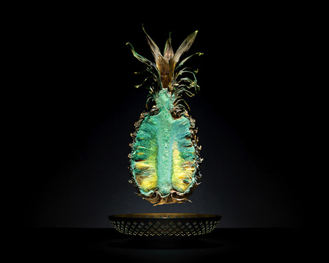 decaying food photographs highlight global food waste