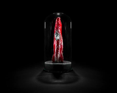 Capsican rotting Klaus-Pichler5