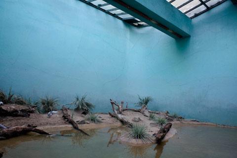 Daniel-Kukla zoo interiors