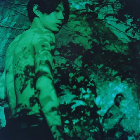 Mayumi Hosokura photography