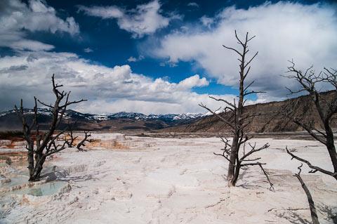 Yellowstone-National-Park Kimberly Mufferi