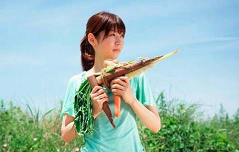 Tsuyoshi-Ozawa vegetable guns