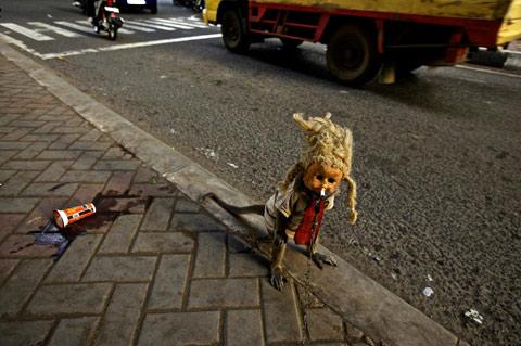 Indonesia monkey Ed-Wray photography