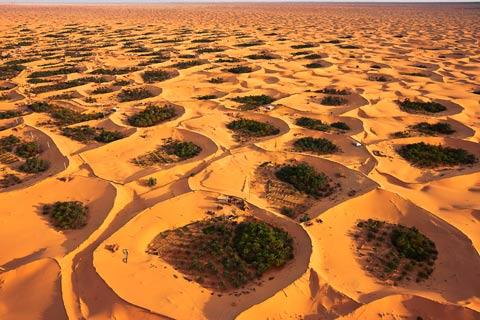 Adjder Oasis, Algeria, 2009 George-Steinmetz8
