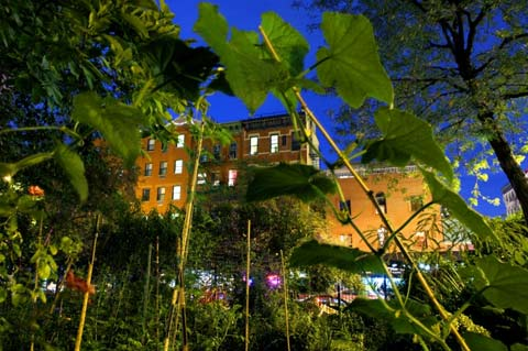 The Magical Gardens Of The East Village Nyc