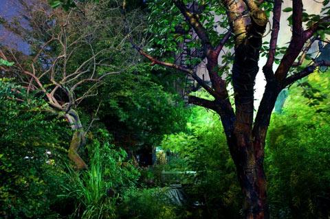 east-village-gardens