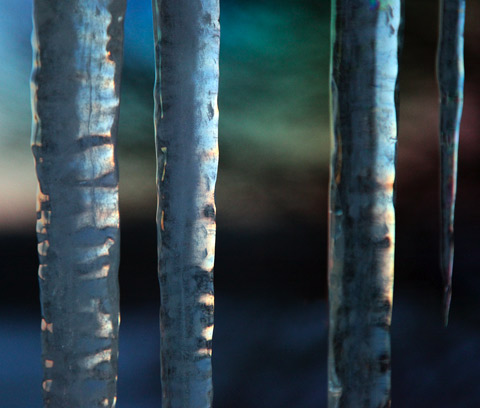 Carolyn-Blackwood icicles