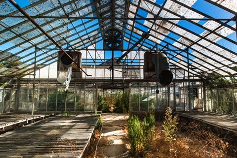 how to build a greenhouse to grow marijuana