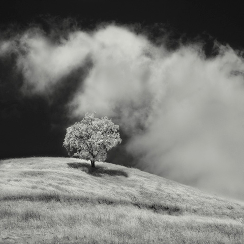 Nathan_Wirth_photography