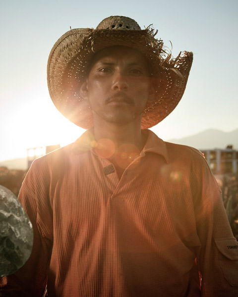 Portraits of Mexican Farmers Working in Agave Fields