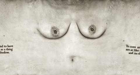 Striking Photos of the Human Torso Stretched Out Like Canvas