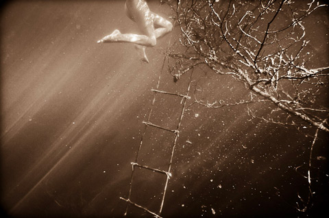 neil_craver_photography