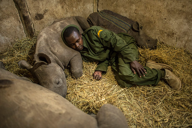 A National Geographic Photographer Documents Local Communities And their Quest to Combat Illegal Poaching in Kenya