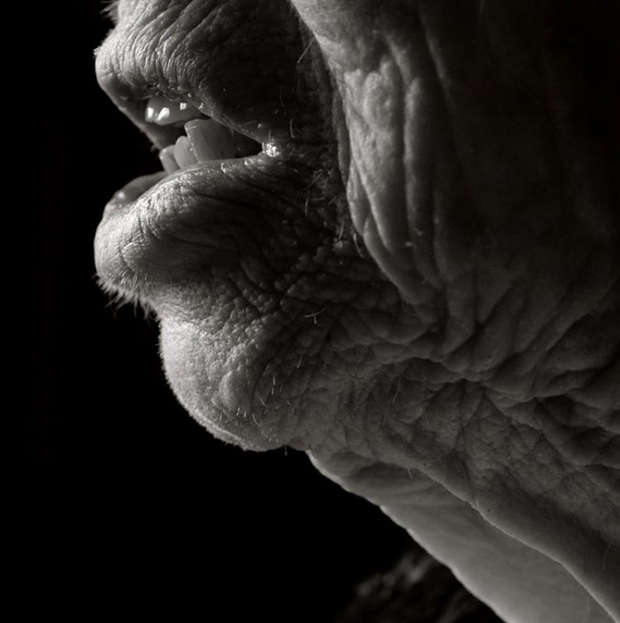 Close up portraits reveal what the human body looks like 100 years of age