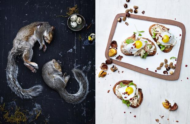 Gourmet Food Photos of Swamp Rat Gumbo and other Delicious Invasive Species