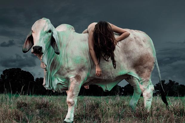 Lamb_03