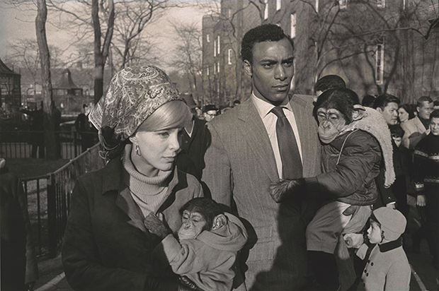 Garry Winogrand, a Godfather of Street Photography, Takes NYC with Simultaneous Exhibitions