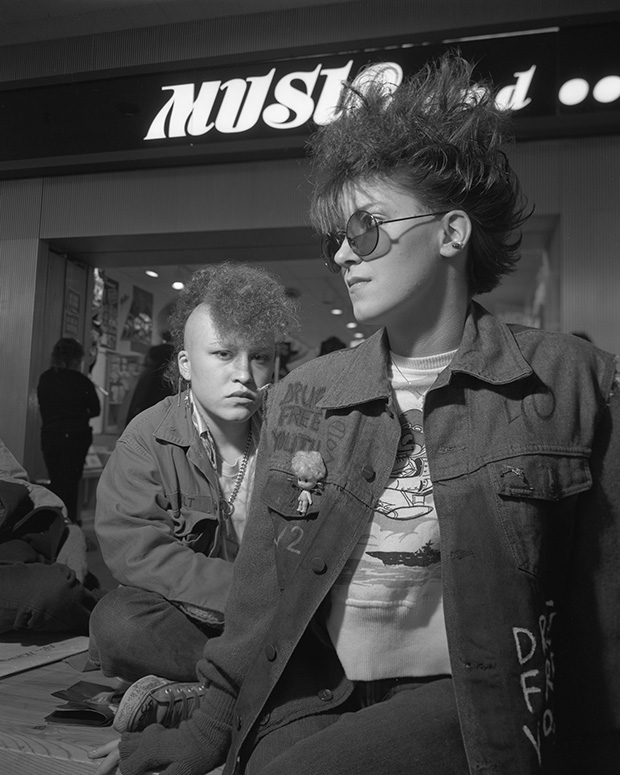 American culture in the 1980s chronicling daily life for the mall