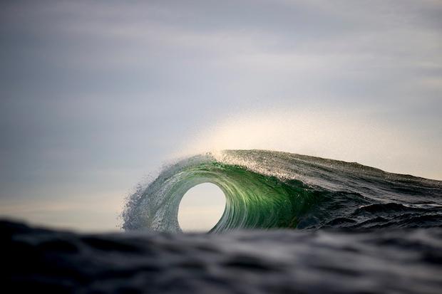 Portal---Ray-Collins