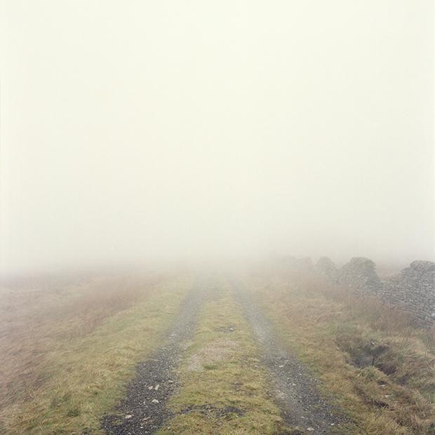 Fog_166701