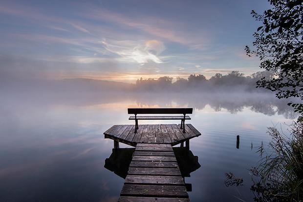 Fog_184471