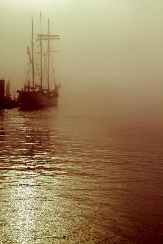 Fog_193084