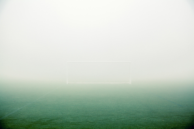 Fog_216428