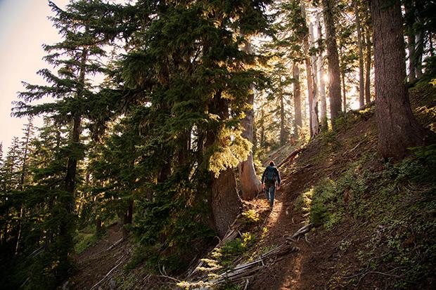 Hiking_150382