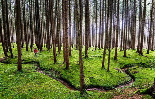 Hiking_210399