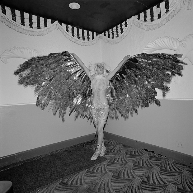 023_77_02_hookersball_wingspan_cmyk