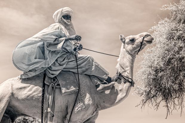 TerriGold_Niger_FeatureShoot-10