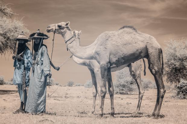 TerriGold_Niger_FeatureShoot-11