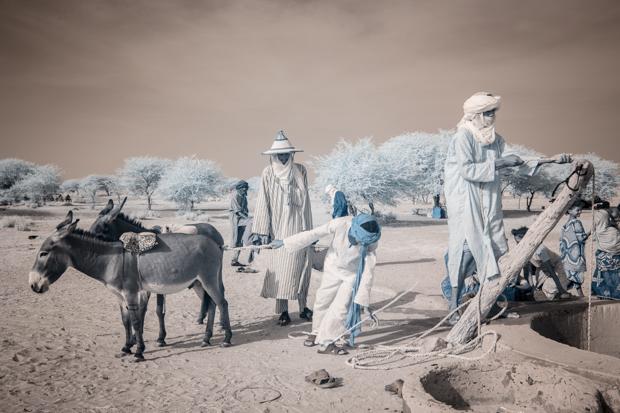 TerriGold_Niger_FeatureShoot-16