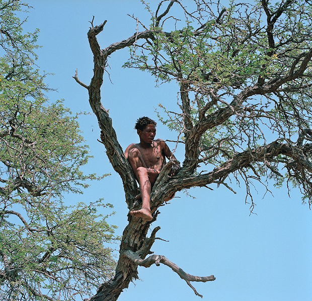 For the Bushmen of Africa, Life is a Struggle Between Tradition and Modernity