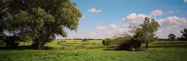 Wim Wenders, Landscape near Wittenberge, Germany, 2014, Image courtesy the artist and BlainSouthern