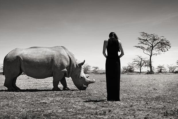 JocelynLuko_with rhino_(c)SeanLeeDavies_2015