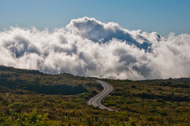 These 19 Photos of the Open Road Take Us on a Beautiful Journey From South Africa to Sonoma (Sponsored)