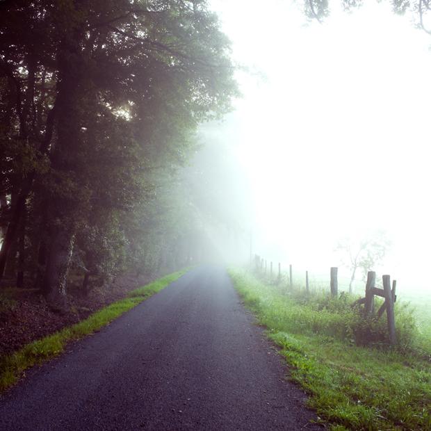 Foggy country road in Boisbuchet, France, Vitra Design School.