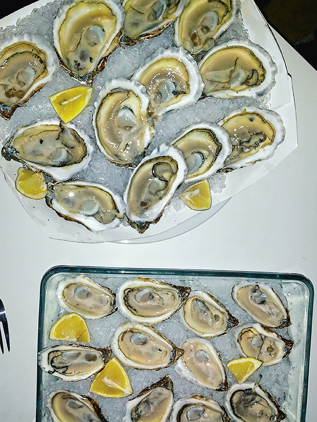8_EB_Oysters